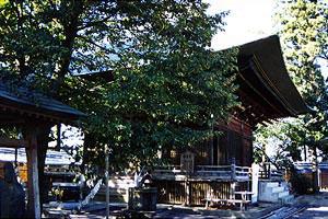 新長谷寺観音堂の画像
