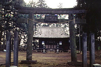 鷲神社鳥居の画像