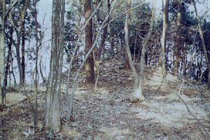 塚山古墳の画像